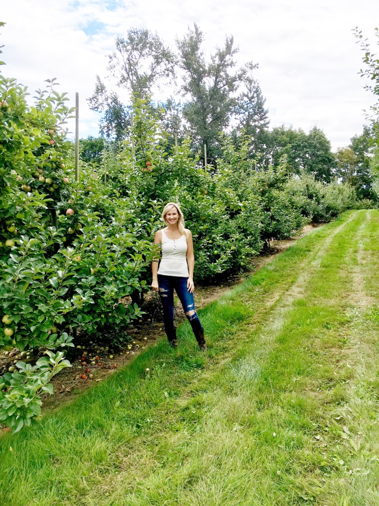 The U-Pick Apple Field